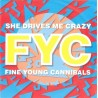 Fine Young Cannibals – She Drives Me Crazy|1988 London Records – 886 361-7-Single