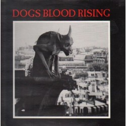 93 Current 93 – Dogs Blood Rising|1988     L.A.Y.L.A.H. Antirecords – LAY 8