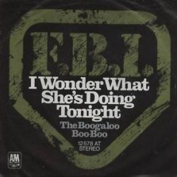 F.B.I.– I wonder what she's doing tonight|1973 A&M Records ‎– 12 578 AT-Single