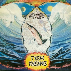 Hillage ‎Steve – Fish Rising|1975     Virgin ‎– V 2031