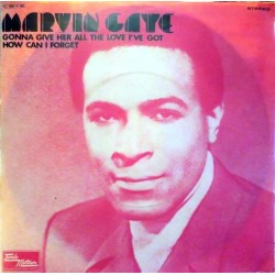 Gaye ‎Marvin – Gonna Give...