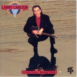 Carlton ‎Larry – On Solid Ground|1989 256 310-1 Germany