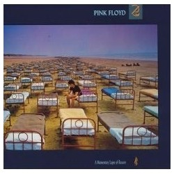 Pink Floyd ‎– A Momentary Lapse Of Reason|1987   EMI Electrola ‎– 064 7 48068 1