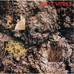Icicle Works The – The...