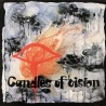 Thelin Eje / Pierre Favre / Jouck Minor – Candles Of Vision|1972 Calig ‎– CAL 30 609