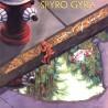 Spyro Gyra – Point Of View|1989 MCA Records – 256 437-1
