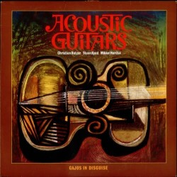 Acoustic Guitars – Gajos In Disguise|1990 Stunt Records – STULP 9001