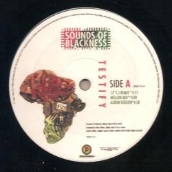Sounds Of Blackness – Testify|1991  28968 1710 1 Maxi Single
