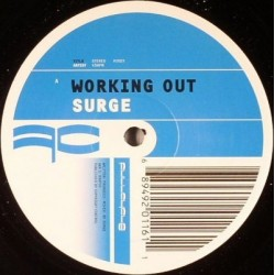 Surge – Working Out |2001 FCY031 Maxi Single