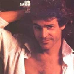 Sanborn David – Straight To The Heart|1984 Warner 925 150-1