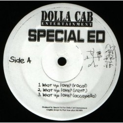 Special Ed – What Up Love? / We Come Again |1999 DC101 -Maxi-Single